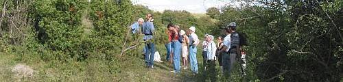 Excursion du 23.08.2003, réserve naturelle Amberkneppchen.